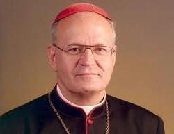 Erdő Péter lesz a Pápa
