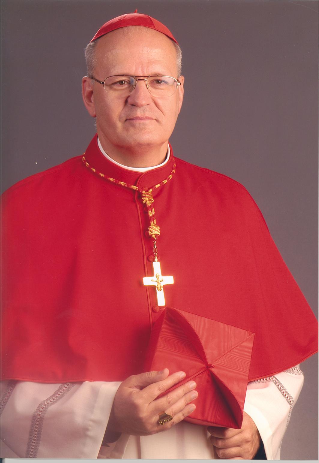 Erdő Péter bíboros