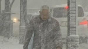 img_606X341_blizzard-japan-2811-nc