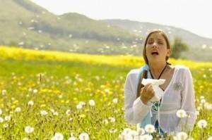 Pollenhelyzet - A tavaszi szezon csúcsidőszakában vagyunk