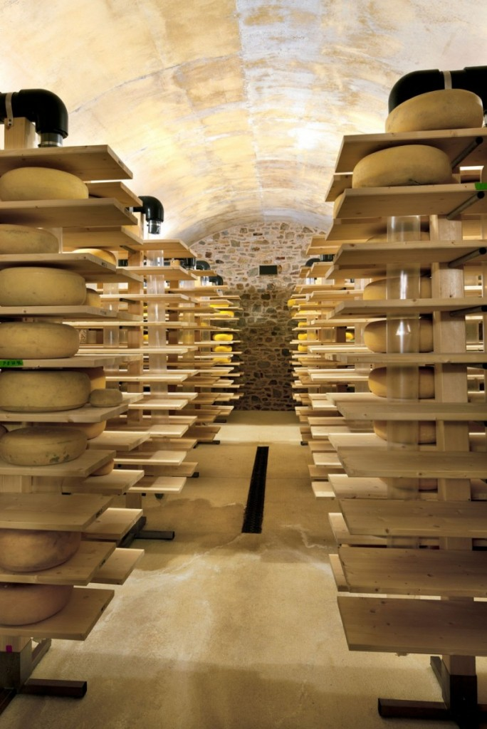 Cheese-production-802x1200