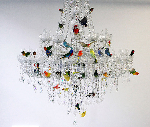 xl-bird-chandelier-by-sebastian-errazuriz-1-thumb-630x534-26206 (1)