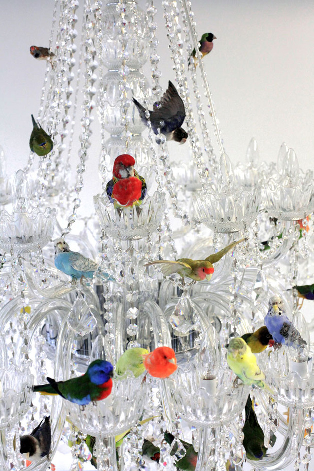 xl-bird-chandelier-by-sebastian-errazuriz-3-thumb-630x944-26210 (1)