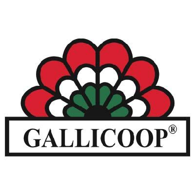 logo Gallicoop-01