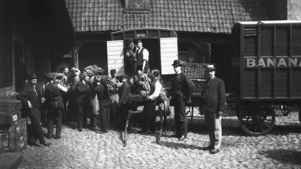 első norvég