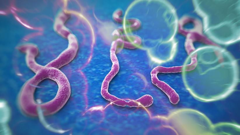 828_Ebola-story