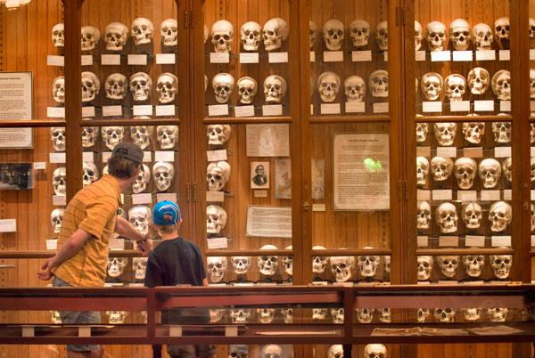 mutter_museum