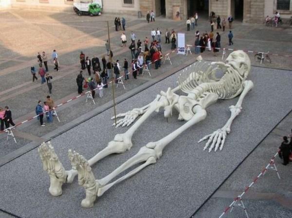 big-skeleton