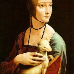 hermelines-no-1485-1490