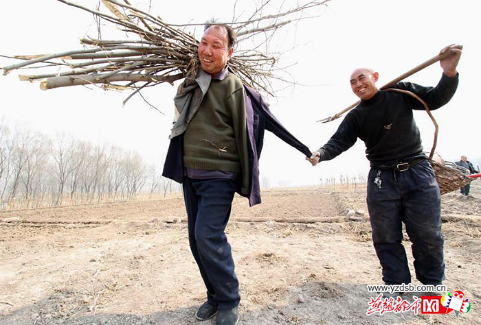 blind-man-amputee-plant-trees-china-12