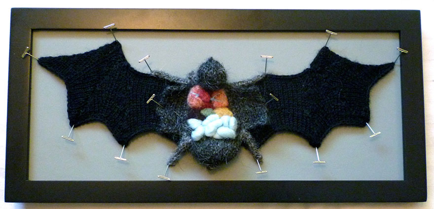 knit-animal-dissection-anatomy-emily-stoneking-aknitomy-2 (1)