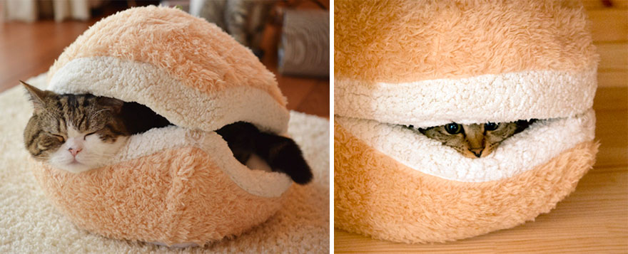 Hamburger pihenőhely