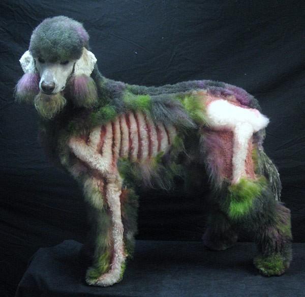 kutyafestés13