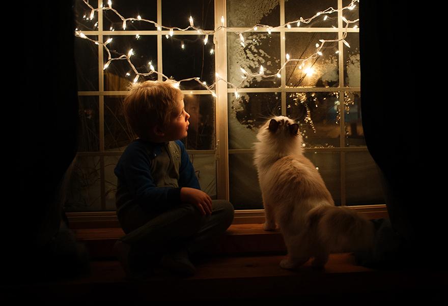 boy-cat-friendship-beth-mancuso-10