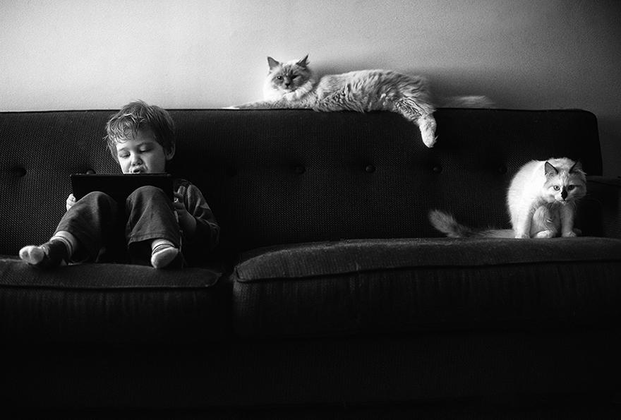 boy-cat-friendship-beth-mancuso-16