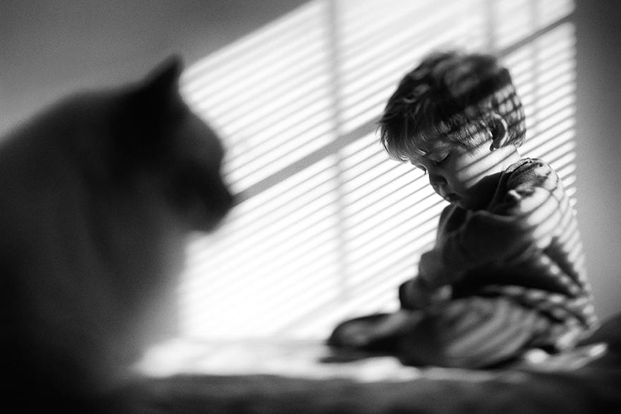boy-cat-friendship-beth-mancuso-24