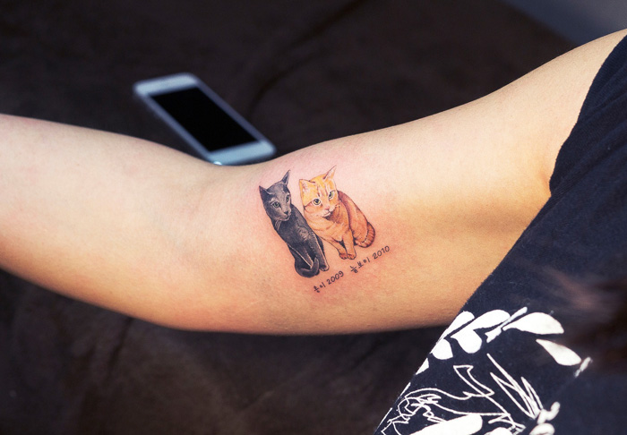 cat-tattoo-illegal-outlaw-tattoo-artists-south-korea-9