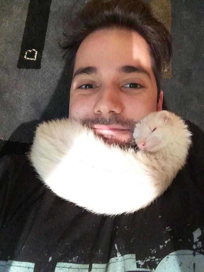 cute-funny-ferrets-15__700