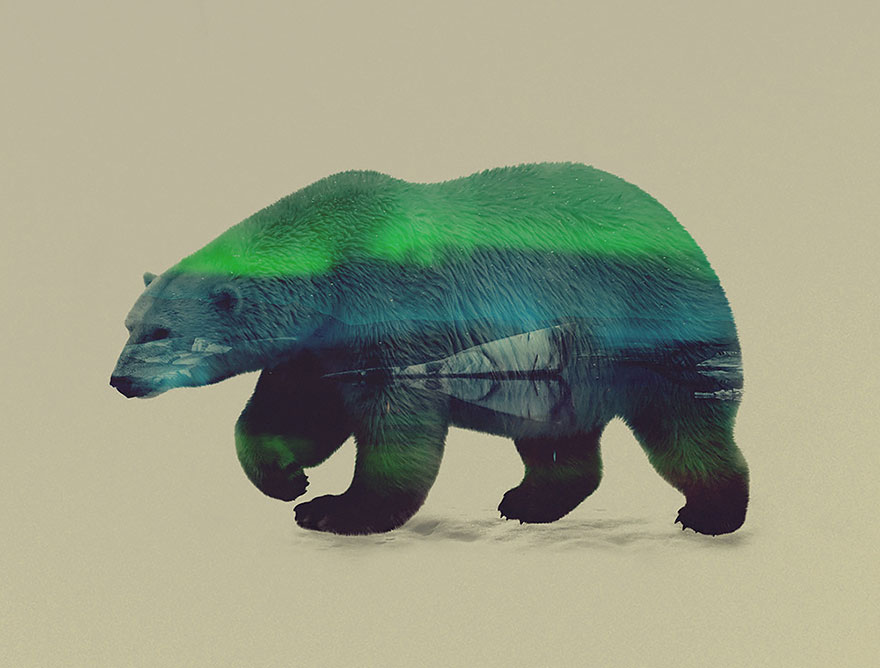 double-exposure-animal-photography-andreas-lie-5__880
