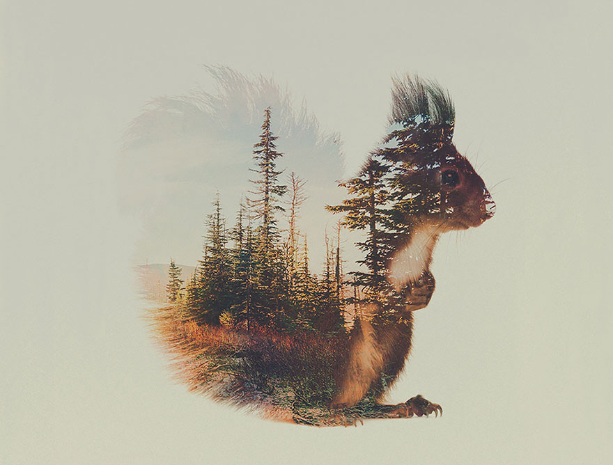 double-exposure-animal-photography-andreas-lie-8__880