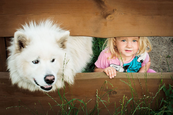kids-with-dogs-101__700
