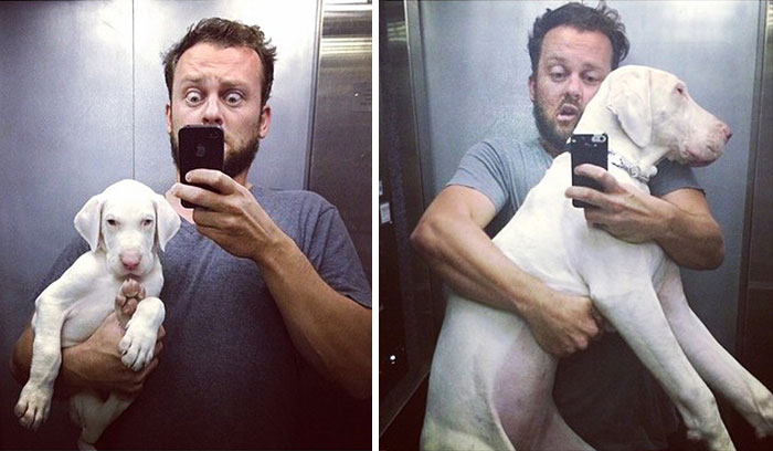 rescued-puppy-growing-up-dave-meinert-4
