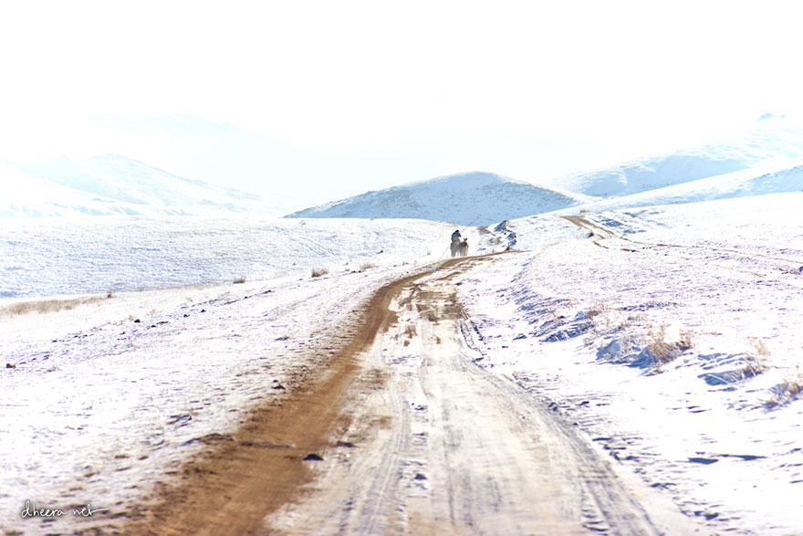 travel-landscape-photography-winter-dheera-venkatraman-mongolia-3