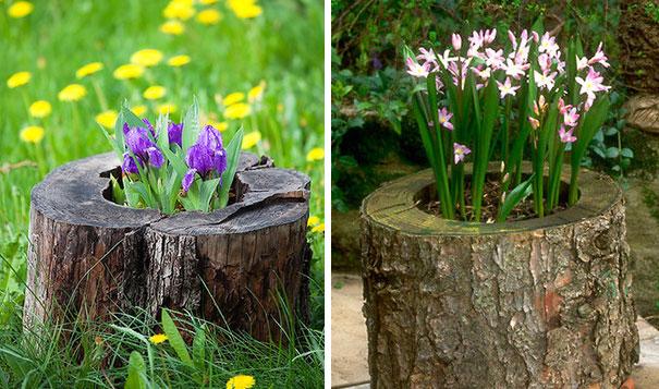tree-stump-flower-garden-12__605