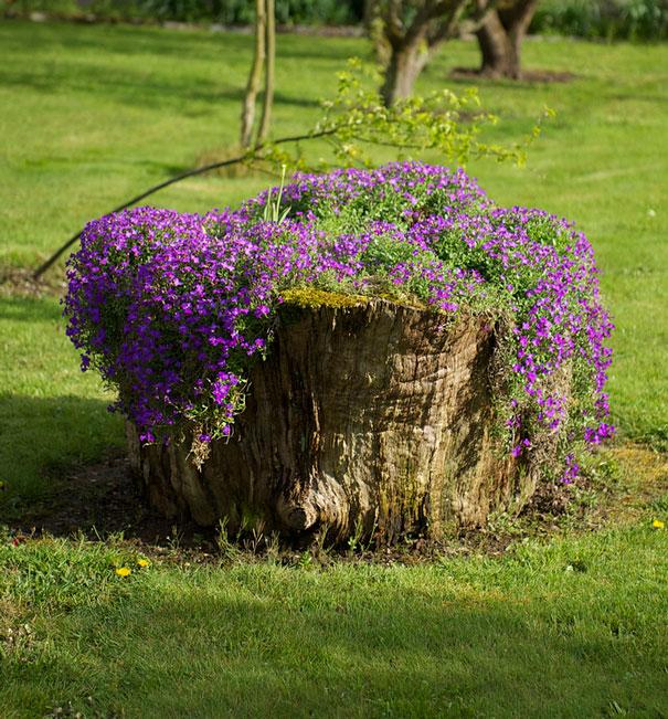 tree-stump-flower-garden-36__605