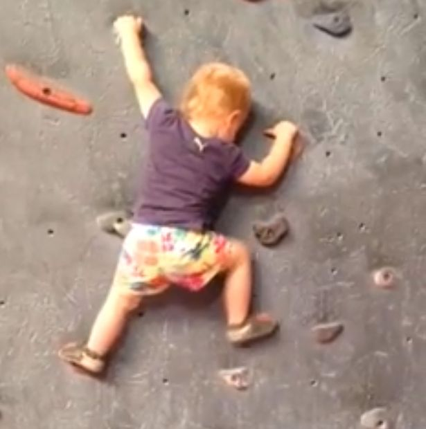 19-month-old-freeclimbing