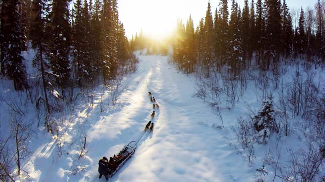 WILLOW, ALASKA- Jeff Hemann and his sled dog team blaze a trail through the snow. (Photo Credit: National Geographic Channels/William Kamp)