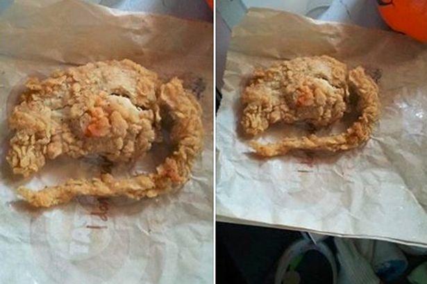 KFC-fried-rat