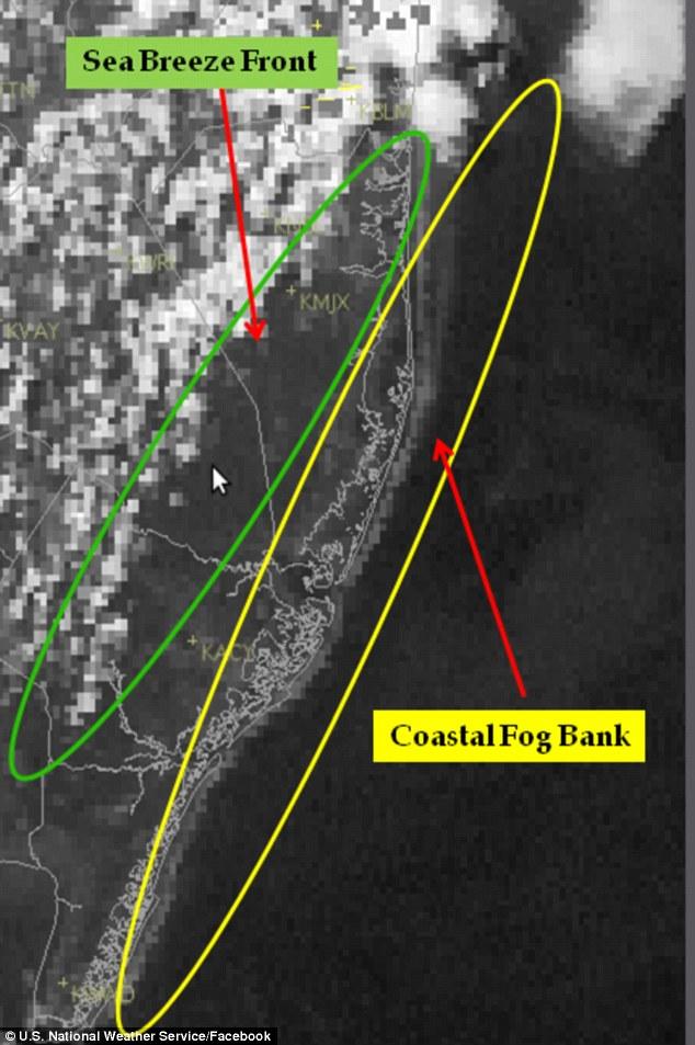 New Jersey cunami3