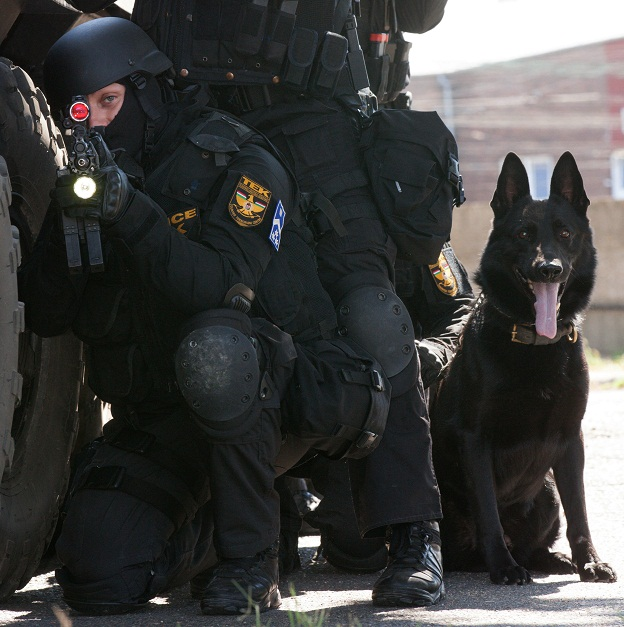 bagira-rendőrkutya7