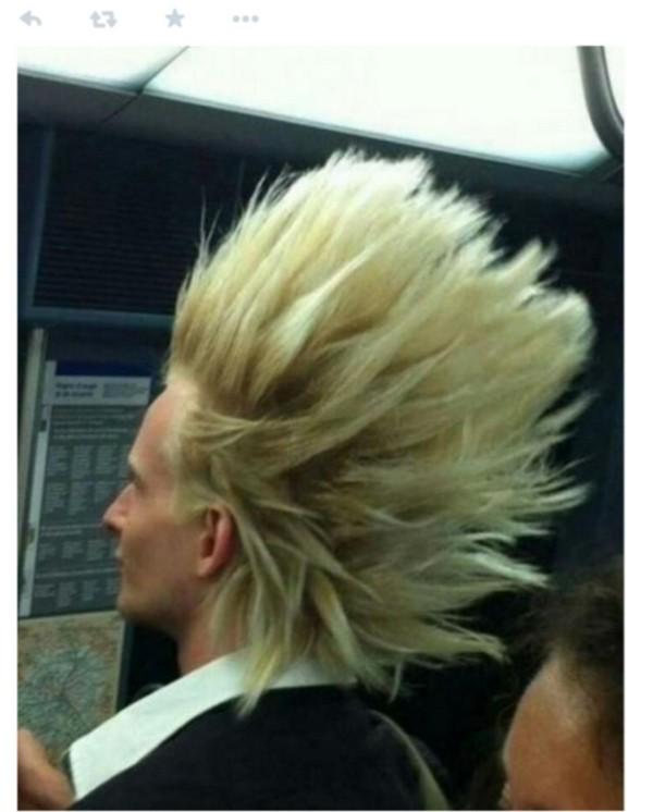 bolondos haj8