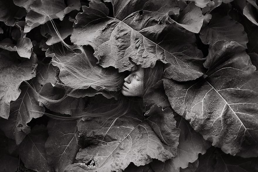 Nature.Lithuania__880