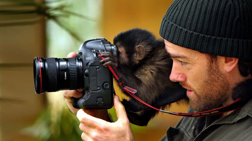 animals-with-camera-helping-photographers-10__880