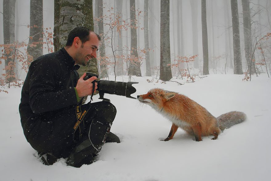 animals-with-camera-helping-photographers-21-1__880