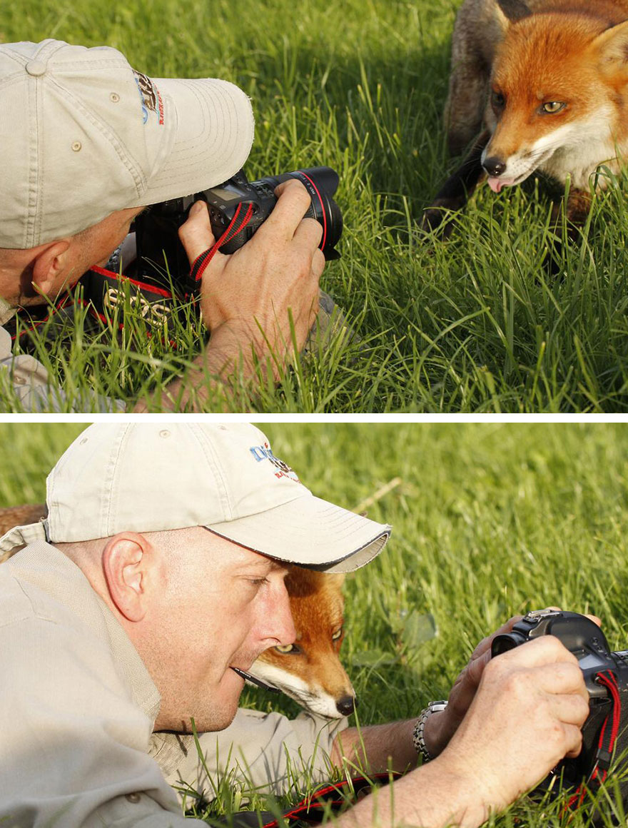animals-with-camera-helping-photographers-31__880 (1)