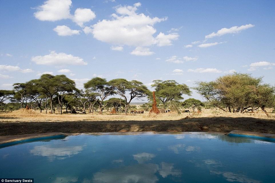 Sanctuary Swala, Tangarire, Tanzania