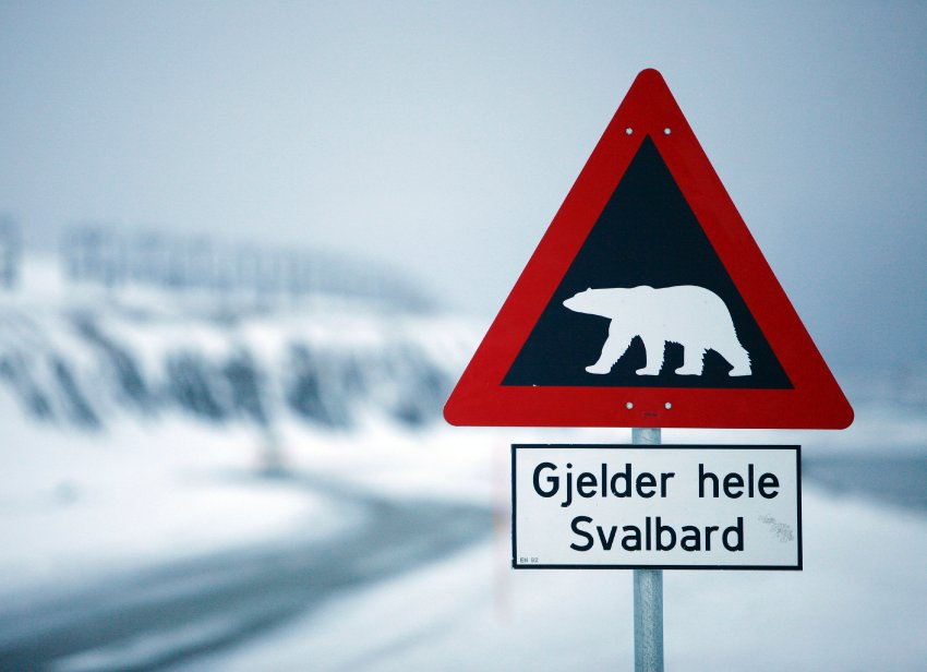 A sign warning of polar bears is seen Feb. 25, 2008 outside of Longyearbyen, Norway on the Arctic archipelago of Svalbard, as far north as you can fly on a scheduled flight. At about 78 degrees north latitude, it is less than 1,000 kilometers (620 miles) from the North Pole.<div class='article-ad'><script src=