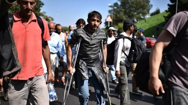 Ez a mankós ember vezeti a migráns tömeget