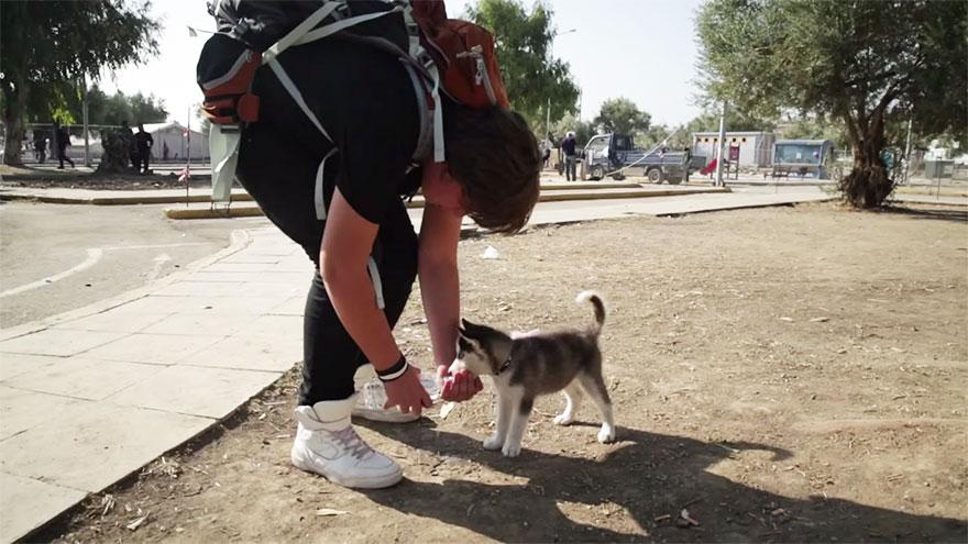 syrian-refugee-aslan-puppy-rose-500-km-greece-lesbos-1