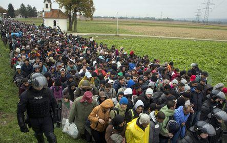 Illegális bevándorlók a horvát-szlovén határ közelében