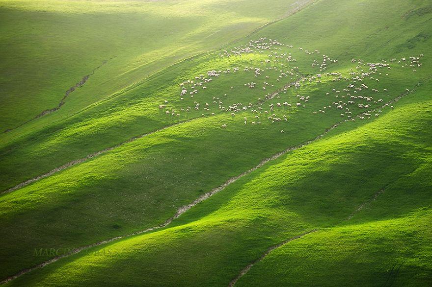 Moravian-fields-__880