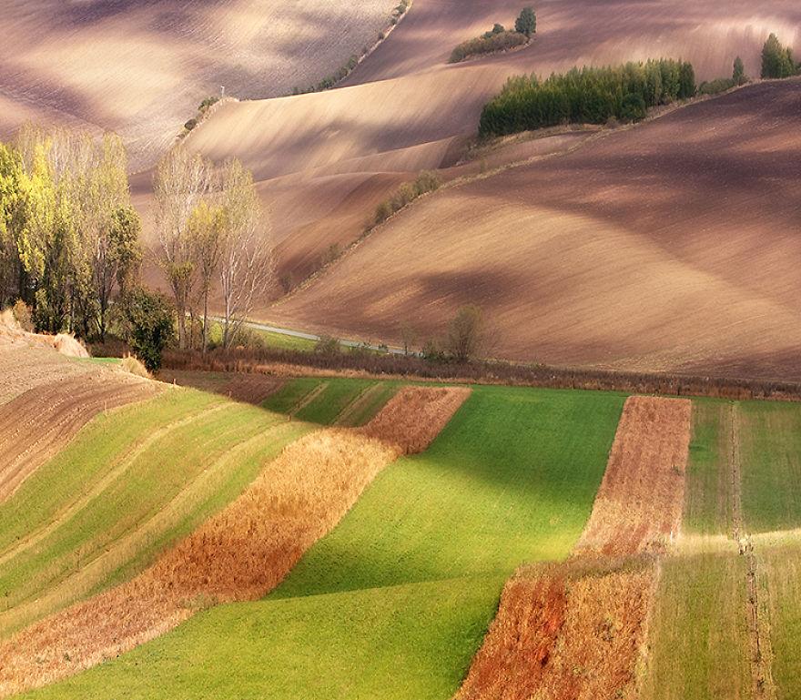 autumn-on-fields-900__880