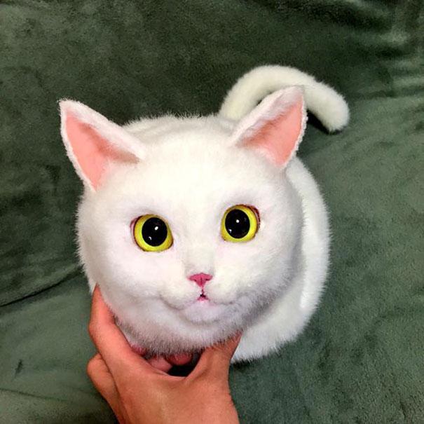 handmade-realistic-cat-bags-pico-38