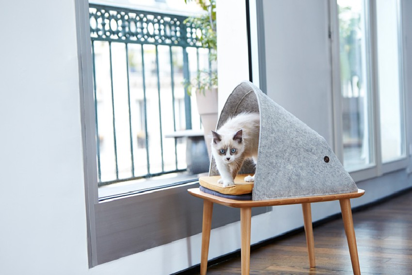 ideas-modern-cat-furniture