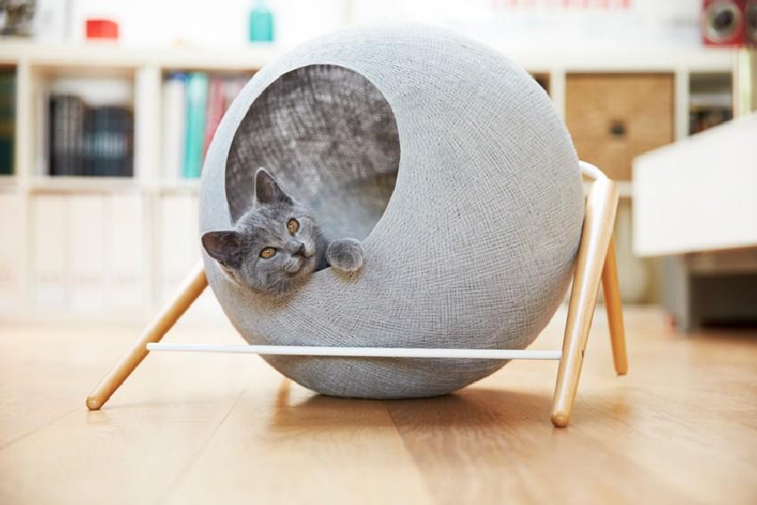 modern-cat-furniture-1