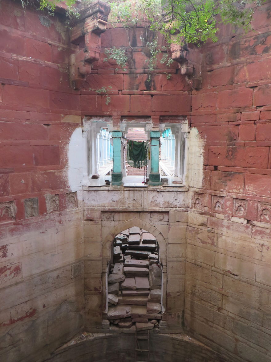 Ive-Spent-Years-Searching-For-Indias-Vanishing-Subterranean-Marvels5__880
